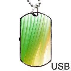 Folded Paint Texture Background Dog Tag Usb Flash (two Sides) by Simbadda