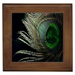 Feather Peacock Drops Green Framed Tiles by Simbadda