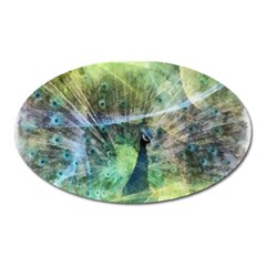 Digitally Painted Abstract Style Watercolour Painting Of A Peacock Oval Magnet by Simbadda