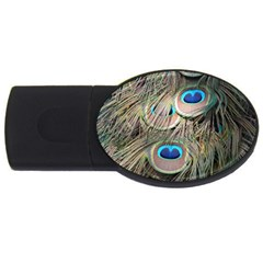 Colorful Peacock Feathers Background Usb Flash Drive Oval (4 Gb) by Simbadda