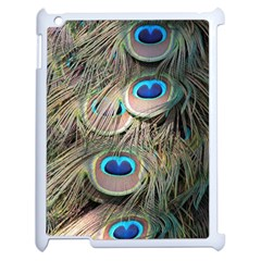 Colorful Peacock Feathers Background Apple Ipad 2 Case (white) by Simbadda