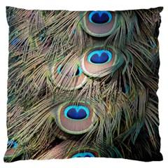 Colorful Peacock Feathers Background Standard Flano Cushion Case (two Sides) by Simbadda