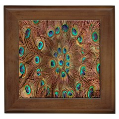 Peacock Pattern Background Framed Tiles by Simbadda