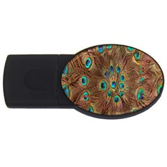 Peacock Pattern Background Usb Flash Drive Oval (4 Gb) by Simbadda