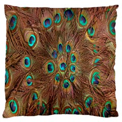 Peacock Pattern Background Large Cushion Case (two Sides) by Simbadda