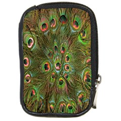 Peacock Feathers Green Background Compact Camera Cases by Simbadda