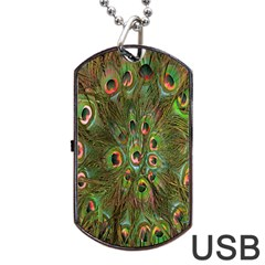 Peacock Feathers Green Background Dog Tag Usb Flash (one Side) by Simbadda