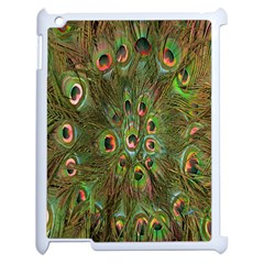 Peacock Feathers Green Background Apple Ipad 2 Case (white) by Simbadda