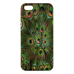 Peacock Feathers Green Background Apple Iphone 5 Premium Hardshell Case by Simbadda