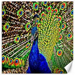 Graphic Painting Of A Peacock Canvas 16  X 16   by Simbadda