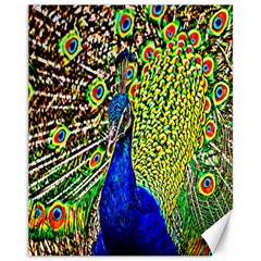 Graphic Painting Of A Peacock Canvas 11  X 14   by Simbadda