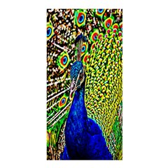 Graphic Painting Of A Peacock Shower Curtain 36  X 72  (stall)  by Simbadda