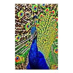 Graphic Painting Of A Peacock Shower Curtain 48  X 72  (small)  by Simbadda