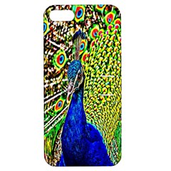 Graphic Painting Of A Peacock Apple Iphone 5 Hardshell Case With Stand by Simbadda