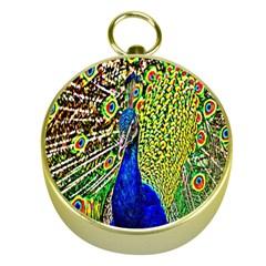 Graphic Painting Of A Peacock Gold Compasses by Simbadda