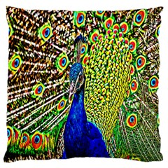 Graphic Painting Of A Peacock Standard Flano Cushion Case (one Side) by Simbadda