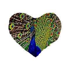 Graphic Painting Of A Peacock Standard 16  Premium Flano Heart Shape Cushions by Simbadda