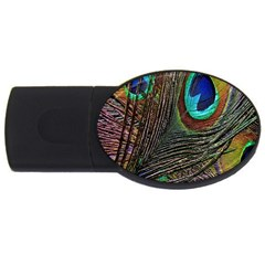 Peacock Feathers Usb Flash Drive Oval (4 Gb) by Simbadda