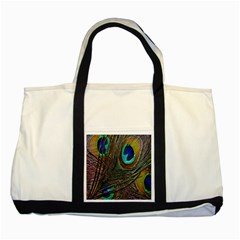 Peacock Feathers Two Tone Tote Bag by Simbadda