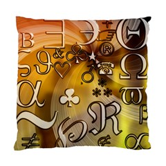 Symbols On Gradient Background Embossed Standard Cushion Case (two Sides) by Amaryn4rt