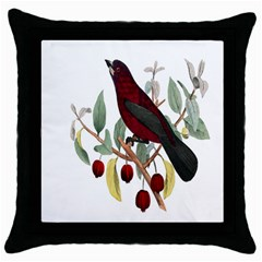 Bird On Branch Illustration Throw Pillow Case (black) by Amaryn4rt
