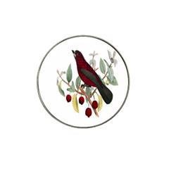 Bird On Branch Illustration Hat Clip Ball Marker (4 pack)