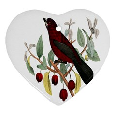 Bird On Branch Illustration Heart Ornament (two Sides) by Amaryn4rt