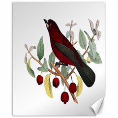 Bird On Branch Illustration Canvas 16  X 20   by Amaryn4rt