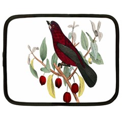 Bird On Branch Illustration Netbook Case (large) by Amaryn4rt