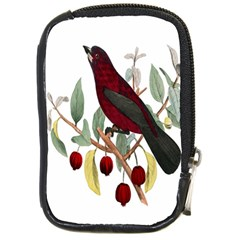 Bird On Branch Illustration Compact Camera Cases by Amaryn4rt