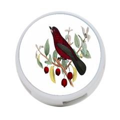 Bird On Branch Illustration 4 Port Usb Hub (one Side) by Amaryn4rt
