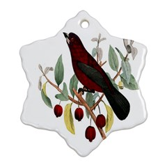 Bird On Branch Illustration Snowflake Ornament (two Sides) by Amaryn4rt
