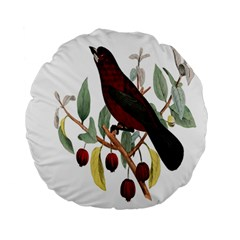 Bird On Branch Illustration Standard 15  Premium Round Cushions by Amaryn4rt