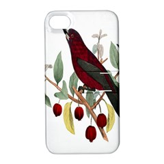 Bird On Branch Illustration Apple Iphone 4/4s Hardshell Case With Stand by Amaryn4rt