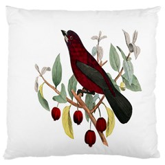 Bird On Branch Illustration Large Flano Cushion Case (two Sides) by Amaryn4rt