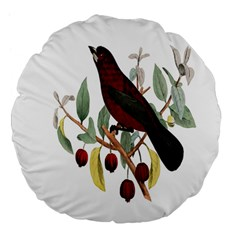 Bird On Branch Illustration Large 18  Premium Flano Round Cushions by Amaryn4rt