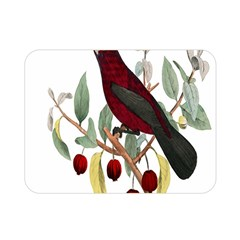 Bird On Branch Illustration Double Sided Flano Blanket (mini)  by Amaryn4rt