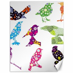 Birds Colorful Floral Funky Canvas 36  X 48   by Amaryn4rt