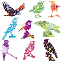 Birds Colorful Floral Funky Magic Photo Cubes by Amaryn4rt
