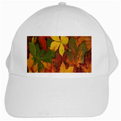 Colorful Autumn Leaves Leaf Background White Cap by Amaryn4rt