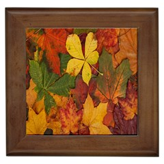 Colorful Autumn Leaves Leaf Background Framed Tiles by Amaryn4rt