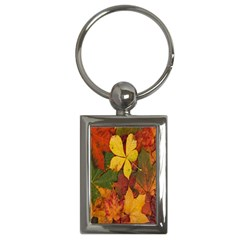 Colorful Autumn Leaves Leaf Background Key Chains (rectangle)  by Amaryn4rt