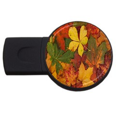 Colorful Autumn Leaves Leaf Background Usb Flash Drive Round (2 Gb) by Amaryn4rt
