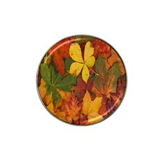 Colorful Autumn Leaves Leaf Background Hat Clip Ball Marker (4 Pack) by Amaryn4rt