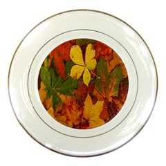 Colorful Autumn Leaves Leaf Background Porcelain Plates by Amaryn4rt