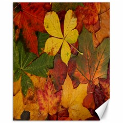 Colorful Autumn Leaves Leaf Background Canvas 16  X 20
