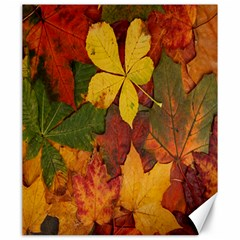 Colorful Autumn Leaves Leaf Background Canvas 20  X 24   by Amaryn4rt