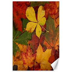 Colorful Autumn Leaves Leaf Background Canvas 24  X 36  by Amaryn4rt