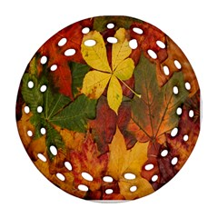 Colorful Autumn Leaves Leaf Background Ornament (round Filigree) by Amaryn4rt
