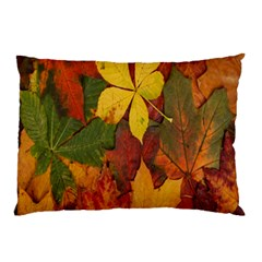 Colorful Autumn Leaves Leaf Background Pillow Case (two Sides) by Amaryn4rt